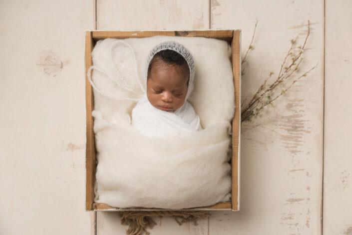 baby photography wilmington