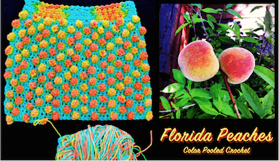 First half of the Florida Peaches Handbag shown with the variegated yarn I'm using, and real FL peaches on my tree!