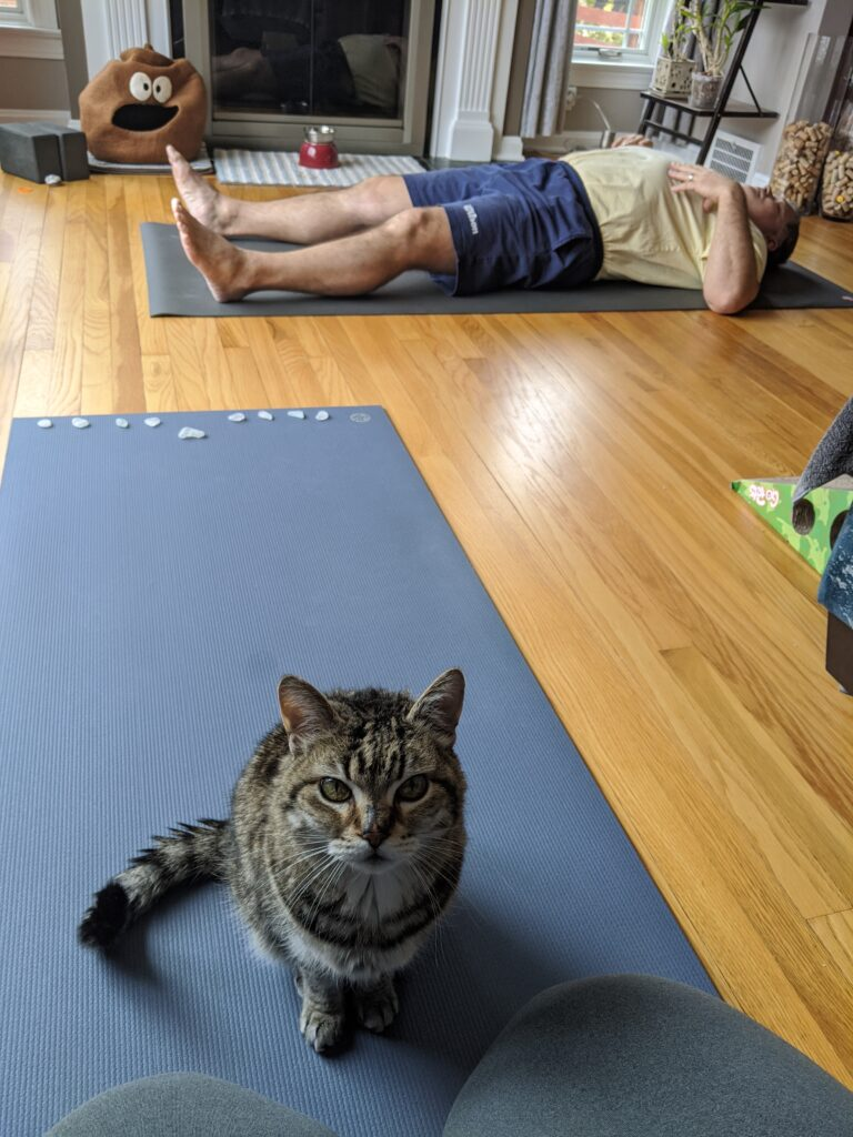 "Family Yoga with the ""Smidoti's"""