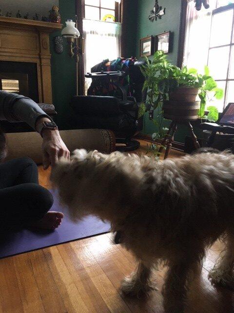 Oscar helps Bobbi & Cathy