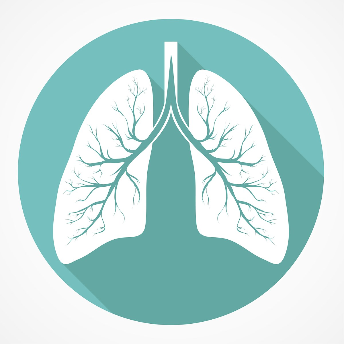 lungs-illus