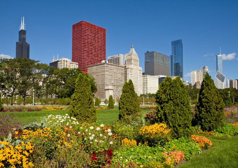downtown-chicago-with-sears-tower-and-grant-park-photo_1355737-770tall
