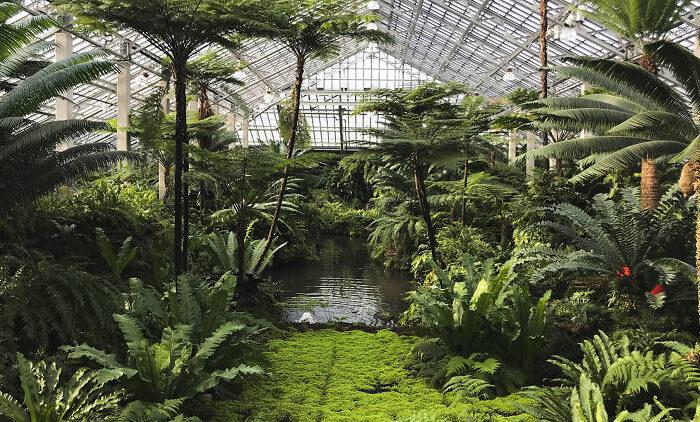 حديقة غارفيلد الزجاجية