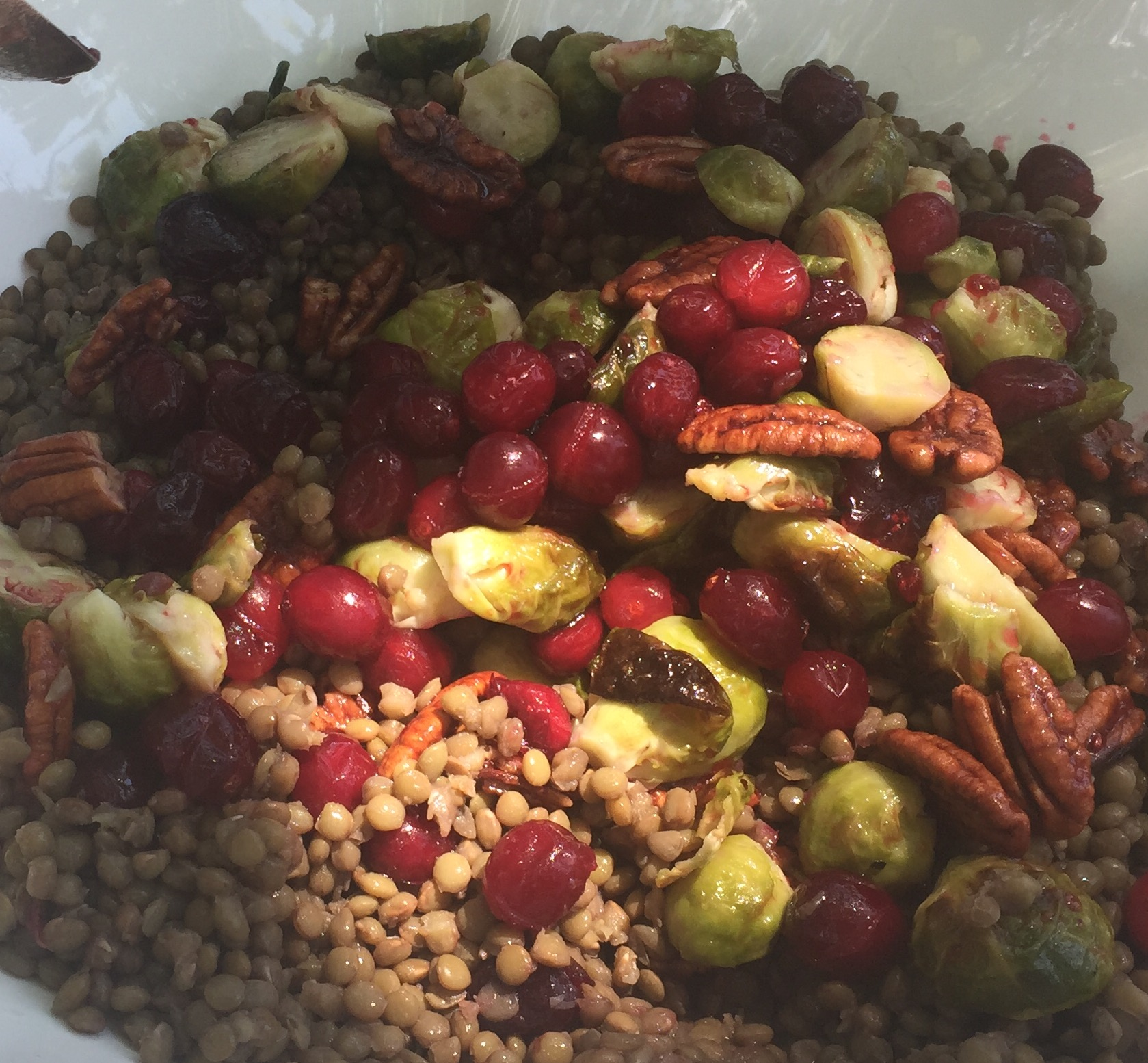 Lentils with Roasted Brussel Sprouts, Cranberries and Candied Pecans