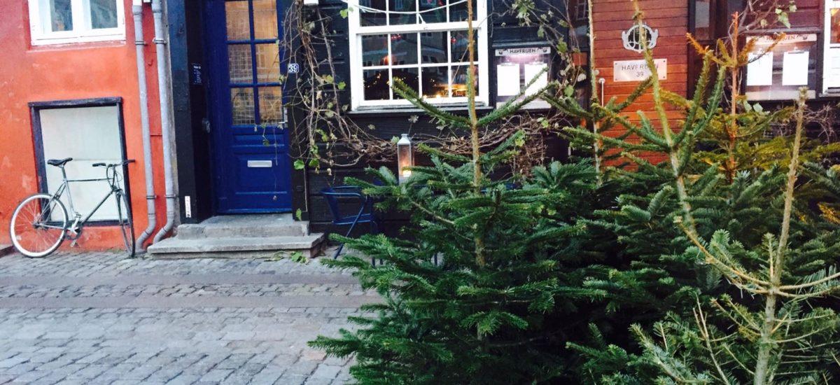 Danish Christmas Traditions and Gløgg