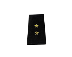 Vice CommodoreCommodore - Epaulets Rank in Bullion