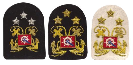Sleeve Emblem, District Director /Past District Director