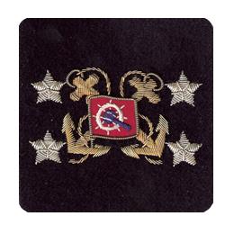 Sleeve Emblem, International Appointed Officer