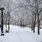 winnipeg 105672 1920 150x150 - Um longo inverno em Kingston