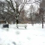 park 150x150 - A vida continua, ainda que com neve.