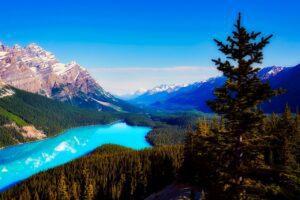 peyto lake 2575418 1280 300x200 - Biodiversidade: Você não imagina o que te espera no Canadá!