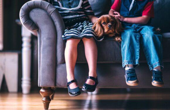 Casa no Canadá: como manter tudo organizado com filhos pequenos?
