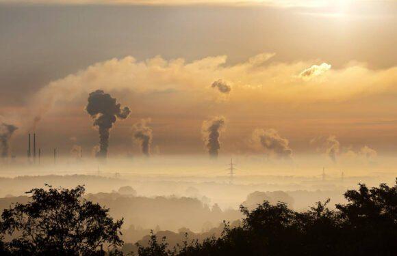 """Você já ouviu falar na """"Carbon Tax"""" que entra em vigor hoje ? Eu te explico !"""