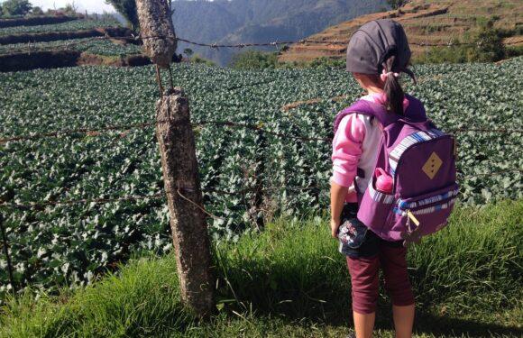 Mães no Canadá com emoção: viajando com crianças