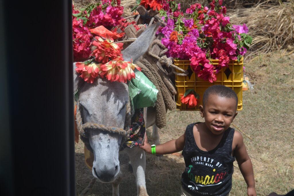 My Trip to Jamaica - image  on https://iamtheflywidow.com