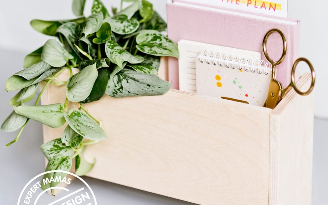 Expert Mama: Paper and Stitch Shares Easy Plants to Make Your Home Look Amazing