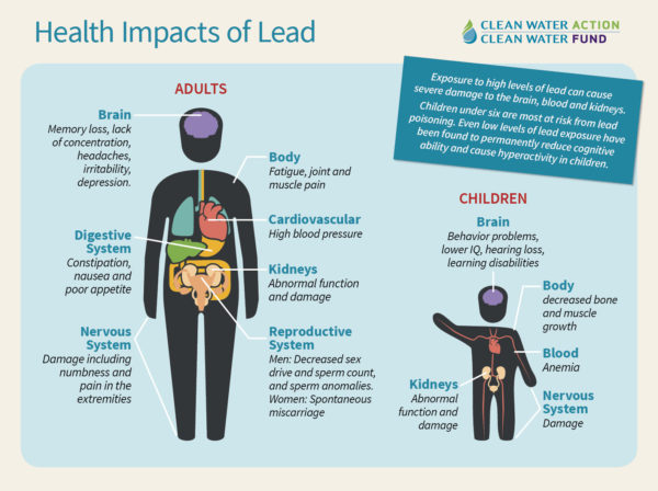 Health Impacts of lead in drinking water