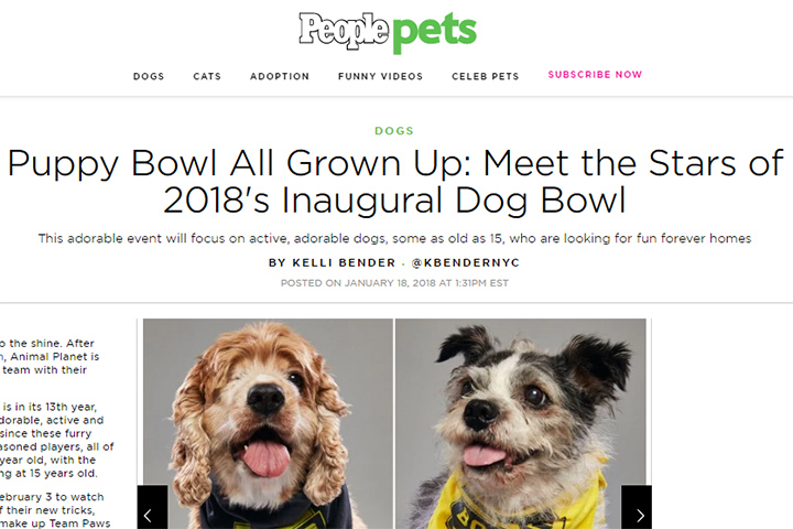 Puppy Bowl All Grown Up: Meet the Stars of 2018's Inaugural Dog Bowl