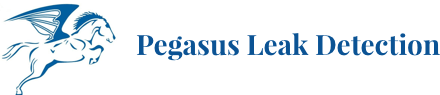 Pegasus Leak Detection