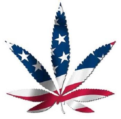 marijuana_usa patriotic leaf