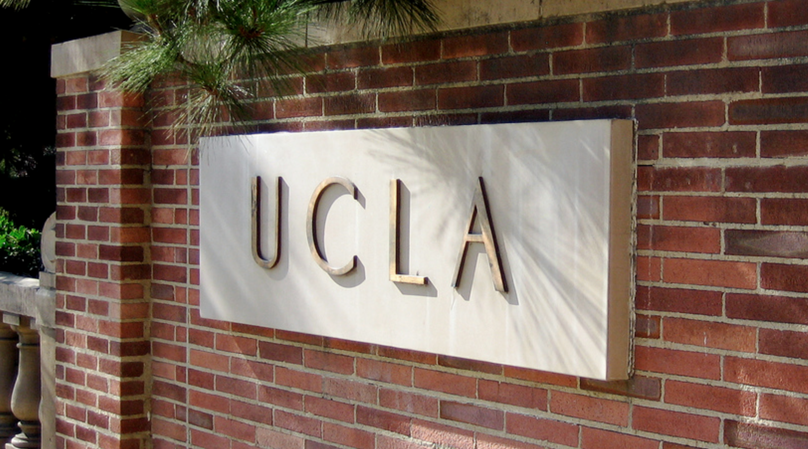 At UCLA, Young Adults With Autism Build Social Skills