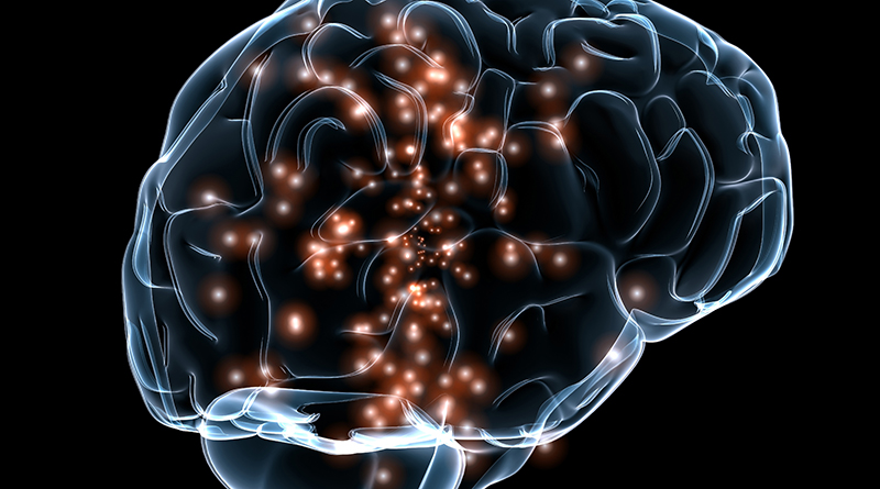 Three Neuroscientists Awarded $1m For Discovering Plasticity In The Brain