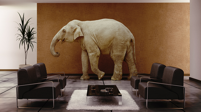 Guilt: The Elephant In The Room Of Special Needs Parents