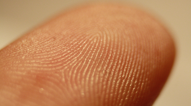 Researchers Find Link Between Touch Sensation And Social Difficulties