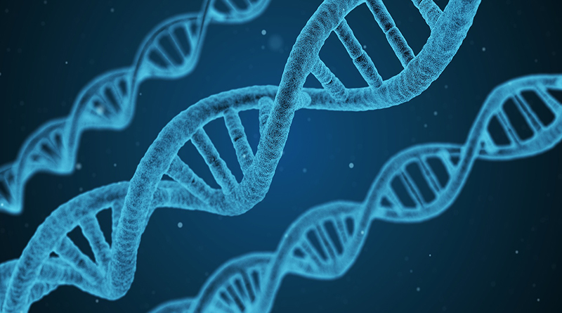 Study Suggests Genetic Link Among Autism, ADHD, Bipolar, And Other Neurodiverse Conditions