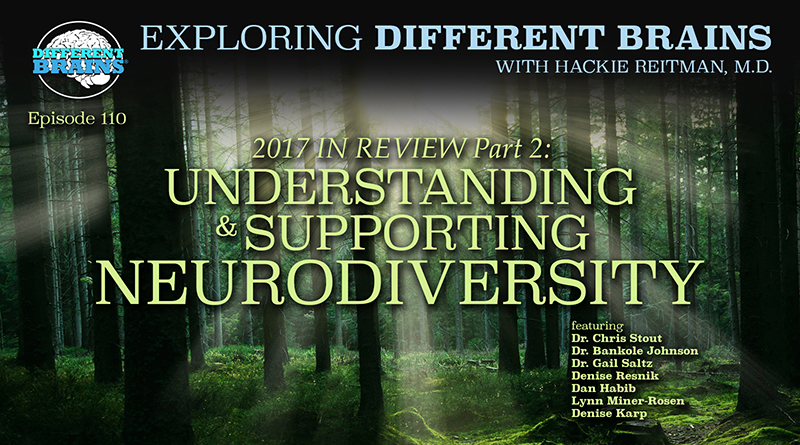 2017 In Review, Part 2: Understanding & Supporting Neurodiversity | EDB 110