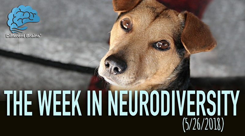How Dogs In Chile Are Helping Kids With Autism At The Dentist – Week In Neurodiversity