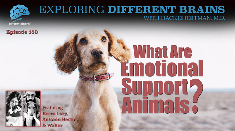 What Are Emotional Support Animals? With Becca Lory & Friends | EDB 150