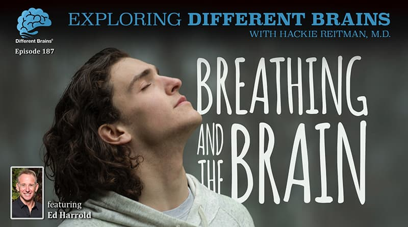 Cover Image - Breathing And The Brain, With Ed Harrold