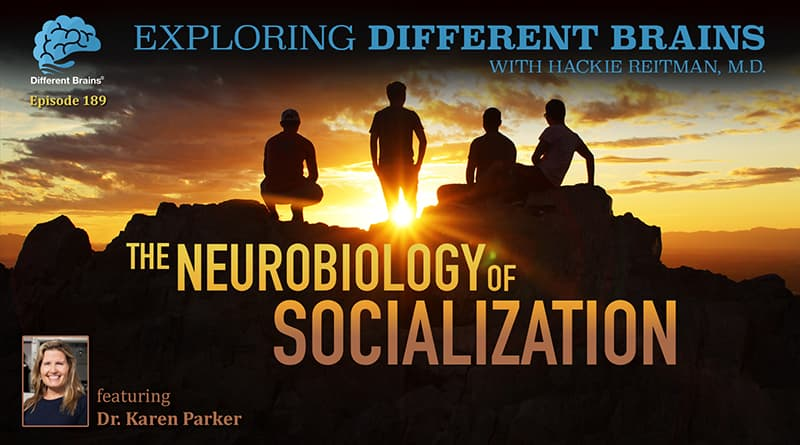 Cover Image - The Neurobiology Of Socialization, With Stanford University's Dr. Karen Parker