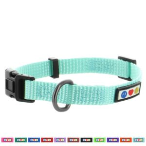 Pawtitas Basic Collar dog collar12