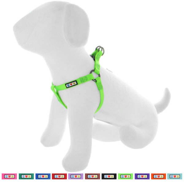 Pawtitas Basic harness dog harness12