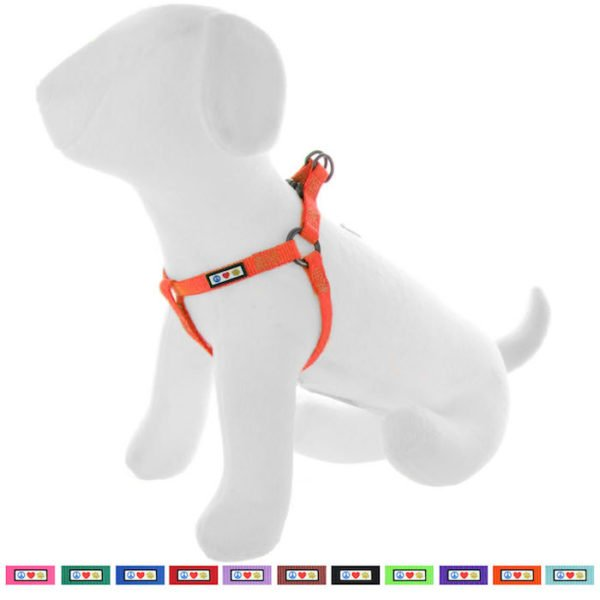 Pawtitas Basic harness dog harness21