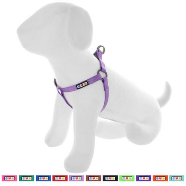 Pawtitas Basic harness dog harness25