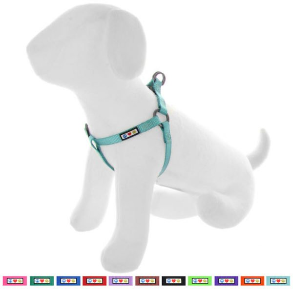 Pawtitas Basic harness dog harness45