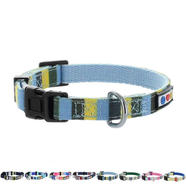 Pawtitas Multicolar Dog Collar11