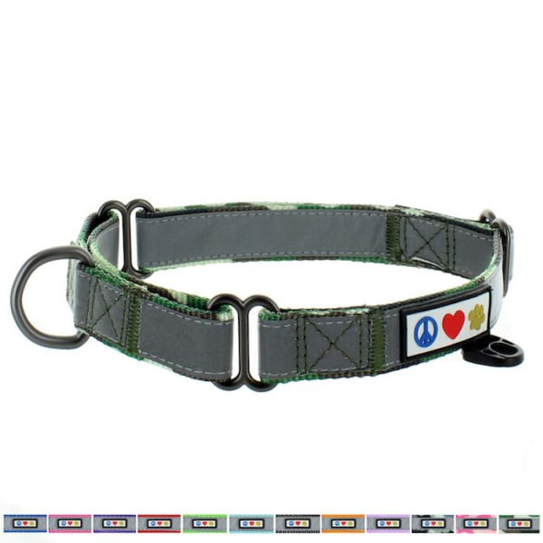 Martingale Collar Dog