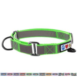 Martingale Collar Dog
