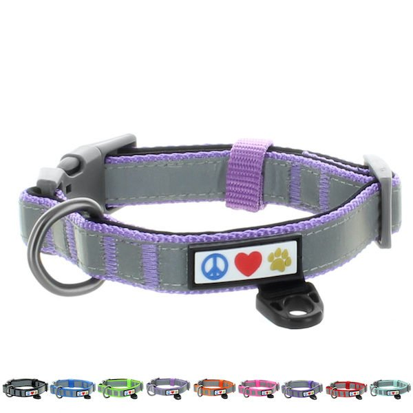 Pawtitas Reflective Padded Collar Dog26
