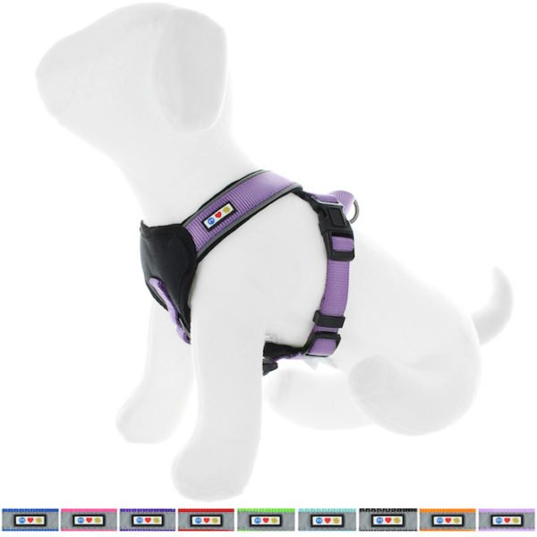 Pawtitas reflective padded dog harness21
