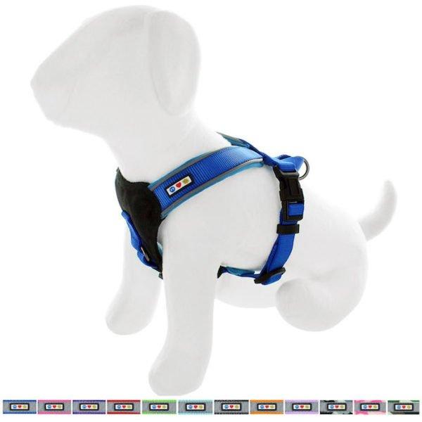 Pawtitas reflective padded dog harness58