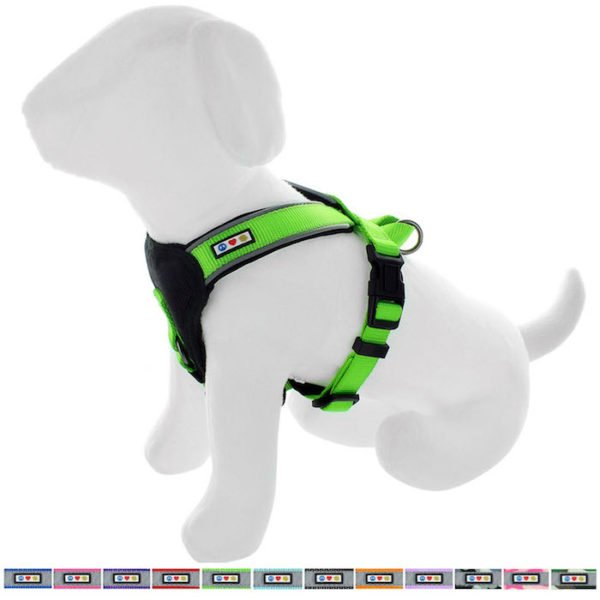 Pawtitas reflective padded dog harness59