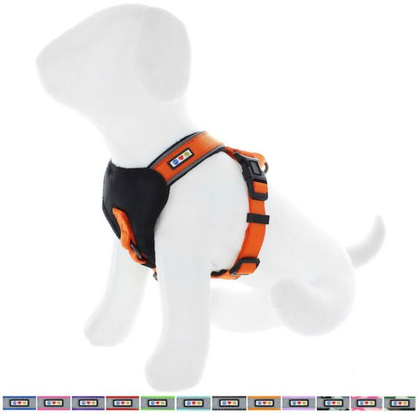 Pawtitas reflective padded dog harness61