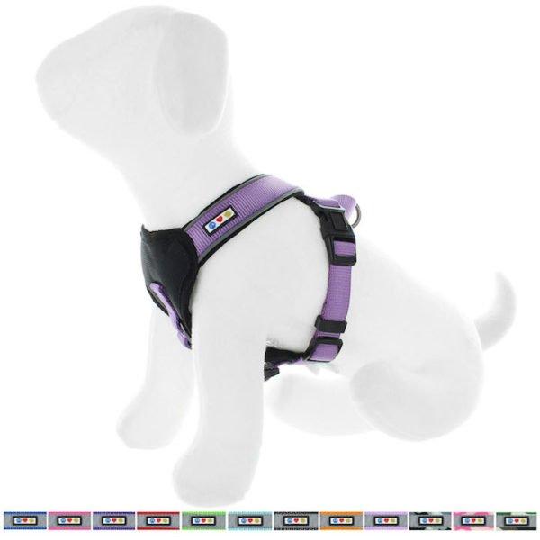 Pawtitas reflective padded dog harness62