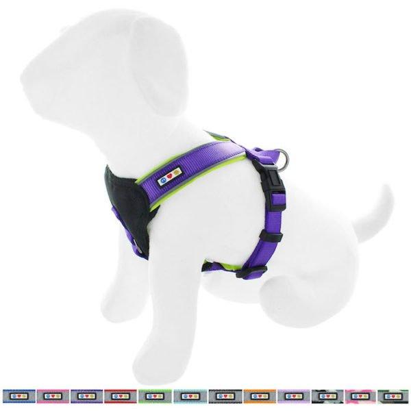 Pawtitas reflective padded dog harness63