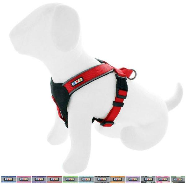 Pawtitas reflective padded dog harness64